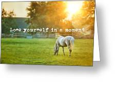 Evening Mist Quote Greeting Card