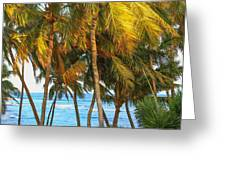 Evening Palms In Trade Winds Greeting Card