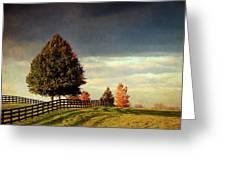 Evening Pasture Greeting Card