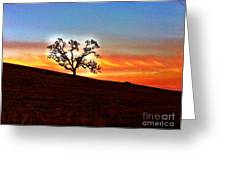 Evening Peace  Greeting Card