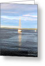 Evening Sail In Frenchman's Bay Greeting Card