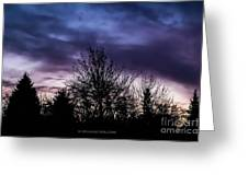 Evening Silhouettes  Greeting Card