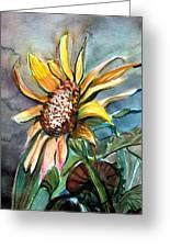 Evening Sun Flower Greeting Card
