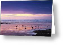 Evening Tide Reflections Greeting Card