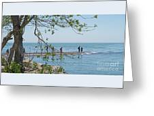 Ever-changing Pelee Greeting Card