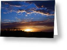 Everglade Sunset Greeting Card