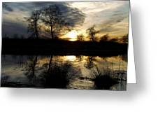 Everglade View Greeting Card