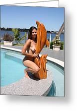 Everglades City Fl. Professional Photographer 350 Greeting Card