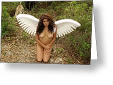 Everglades City Fl. Professional Photographer 4176 Greeting Card