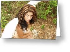 Everglades City Fl. Professional Photographer 4178 Greeting Card