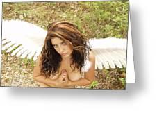 Everglades City Fl. Professional Photographer 4183 Greeting Card