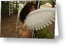 Everglades City Fl. Professional Photographer 4193 Greeting Card