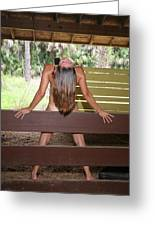 Everglades City Fl. Professional Photographer 817 Greeting Card