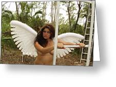 Everglades City Fl.professional Photographer 4190 Greeting Card