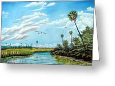 Everglades Inlet Greeting Card