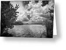 Everglades Lake - 0278abw Greeting Card