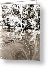 Everglades Reflections Greeting Card