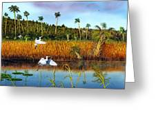 Everglades Sanctuary Greeting Card