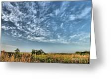 Everglades Sky Greeting Card