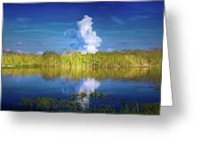 Everglades Smoke Greeting Card