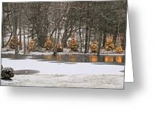 Evergreen Reflection Greeting Card