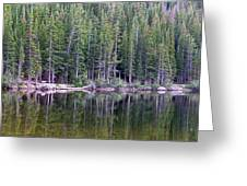 Evergreen Reflections Greeting Card