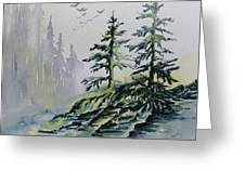 Evergreens In The Mist Greeting Card