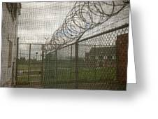 Exercise Yard Through Window In Prison Greeting Card