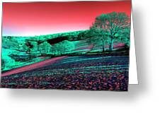 Exmoor In The Pink Greeting Card