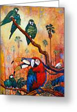 Exotic Birds Of South America  Greeting Card