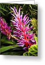 Exotic Flora Greeting Card