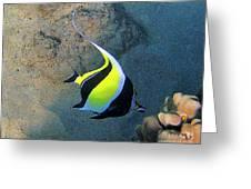 Exotic Reef Fish  Greeting Card by Bette Phelan