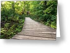 Explore Nature Greeting Card