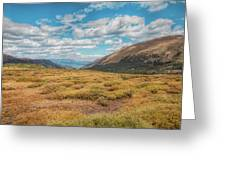 Exploring Guanella Pass Greeting Card