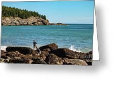 Exploring Rocks At Sand Beach Greeting Card
