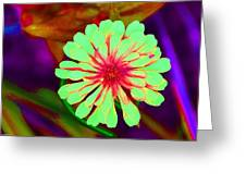Explosion Greeting Card