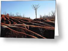 Exposed And Eroded Badlands Greeting Card