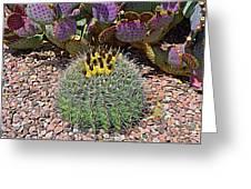 Expressionalism Budding Cactus Greeting Card