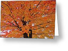 Expressionalism Golden Tree Greeting Card