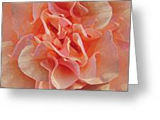 Expressionist Rose Greeting Card