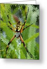 Extruded Spider Greeting Card
