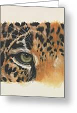 Eye-catching Jaguar Greeting Card
