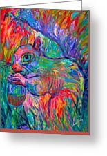 Eye Of The Squirrel Greeting Card