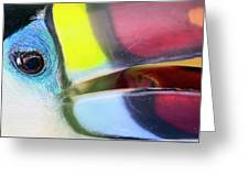 Eye Of The Toucan  Greeting Card