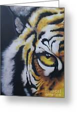 Eye Of Tiger Greeting Card