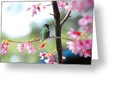 Eye On Spring Greeting Card