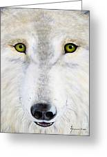 Eyes Of The Wolf Greeting Card