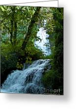 Eyes Over The Flowing Water Greeting Card