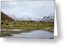 Eyjafjallajokull Iceland Greeting Card