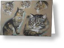 Faa Cat Collage Greeting Card